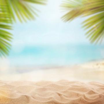 musim panas di pantai dengan telapak tangan , Latar Belakang, Beg, Minum imej latar belakang