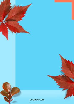summer realistic plant colour colour background , Realism, Leaf, Color Collision Background image