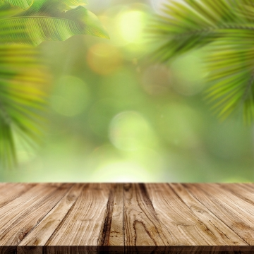 wood table with palm leaves , Palm, Leaves, Palm Leaves Background image