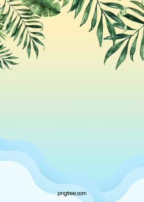 夏の植物海の葉の背景 涼しい かわいい 夏 背景画像
