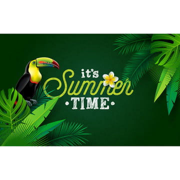 its summer time illustration with flower and toucan bird on green background  vector tropical holiday design with exotic palm leaves and phylodendron for banner  flyer  invitation  brochure  poster or greeting card , Summer, Flower, Background Background image