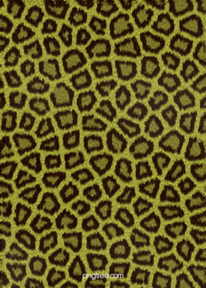 lifelike leopard print effect texture advertising background , Animal, Advertisement, Abstract Background image