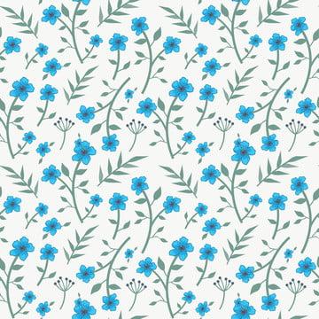 花藍色無縫模式 , 插圖, 牡丹, 植物 背景圖片