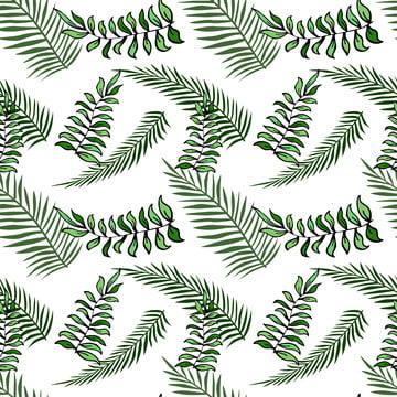 叢林無縫模式森林 , 枝, 熱帶, 夏季 背景圖片