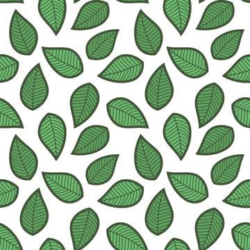 पत्ती हरी निर्बाध पैटर्न , सार, कला, पृष्ठभूमि पृष्ठभूमि छवि