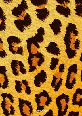 금빛 표범 무늬 배경 , 도안, 무늬, 배경 배경 이미지