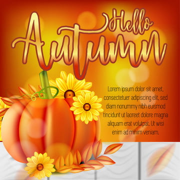 autumn sale banner background template design with pumpkin flower and wooden boards , Design, Sale, Banner Background image