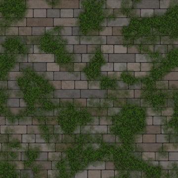 아이비 brickwall 배경 , 배경, 벽돌, 벽돌 벽 배경 이미지