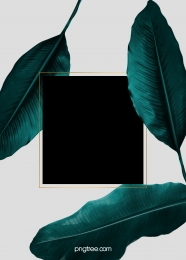 emerald square border wedding background , Wedding, Square Box, Plant Background image