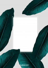 simple emerald wedding background , Wedding, Plant, Emerald Background image