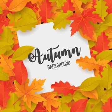 秋の背景と葉ベクトルイラスト , 抄録, 広告, 秋 背景画像