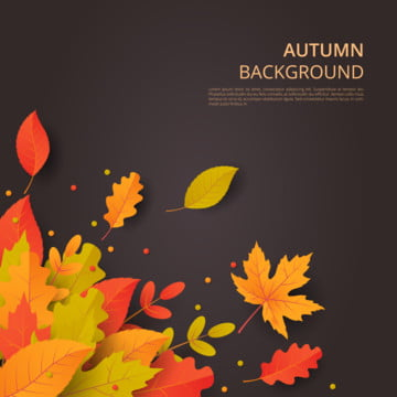 秋の紅葉と秋のベクトルの背景 , 抄録, 広告, 秋 背景画像