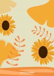 橙色向日葵花植物 , 橙, 向日葵, 花卉 背景圖片
