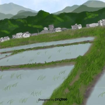 ग्रीष्मकालीन हरे चावल के खेत क्षेत्र फसल घर , गर्मियों में, ग्रीन, धान पृष्ठभूमि छवि