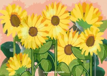 黃色的向日葵花, 黃色, 向日葵, 花卉 背景圖片