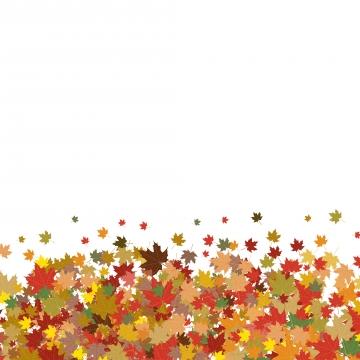 カラフルなカエデの葉の白い背景で隔離の秋の背景 , メープル, 葉, 葉 背景画像