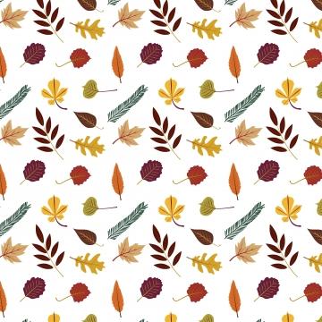 सफेद पृष्ठभूमि पर अलग अलग सुंदर रंगीन शरद ऋतु के पत्तों का संग्रह , शरद ऋतु, पैटर्न, पत्ते पृष्ठभूमि छवि
