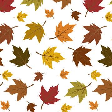 色鮮やかな紅葉の白い背景で隔離のパターン , 秋, パターン, 葉 背景画像