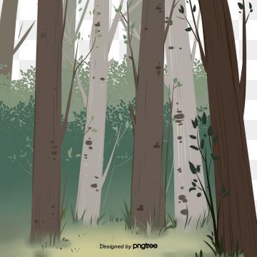 वसंत हरा  विशाल पेड़  पत्ते , पेड़ पर चढ़ना, ग्रीन, वसंत पृष्ठभूमि छवि