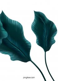 에메랄드 열대 식물 배경 , 에메랄드 그린, 열대, 식물 배경 이미지