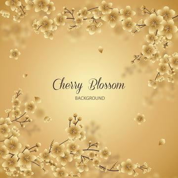 金櫻花花卉背景 , 夏天, 皇家花, 春天 背景圖片