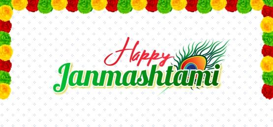 happy janmashtami peacock feather and flower holiday background, Janmashtami, God, Illustration Background image