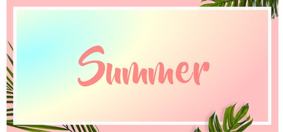 summer palm leaves banner pink background template, Backdrop, Background, Banner Background image
