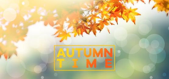 outono abstrato photoshop psd fundo, Outono, Fundos De Outono, Abstract Imagem de fundo