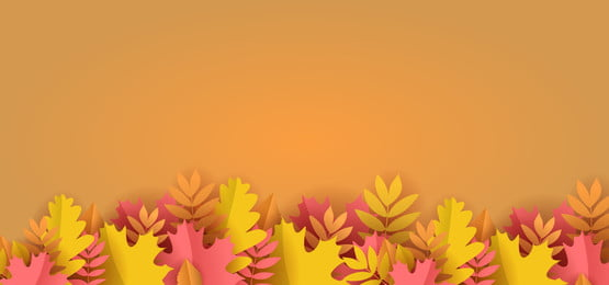 paper cut floral background autumn season with orange colors, Paper, Floral, Background Background image