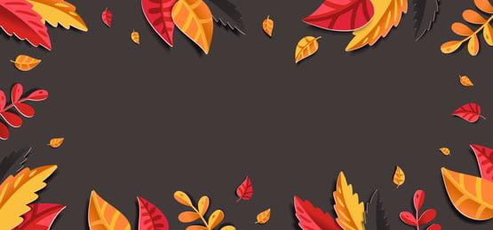 nền hoa mùa thu với lá giấy, Rơi, Giấy, Hoa Ảnh nền