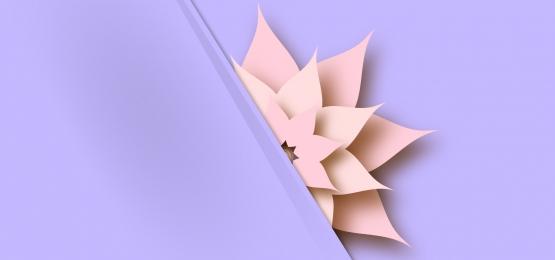 बैंगनी ट्रेंडी पेस्टल पेपर पृष्ठभूमि पर 3 डी फूल, 3 डी, पुष्प, हल्के पृष्ठभूमि छवि