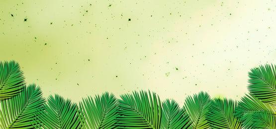 3 डी पुष्प में हथेली की छलांग, हथेली, Leafs, ताड़ के पेड़ पृष्ठभूमि छवि