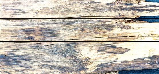 bảng điều khiển bằng gỗ với ván gỗ, Trong Rừng, Gỗ Nền, Kết Cấu Gỗ Ảnh nền