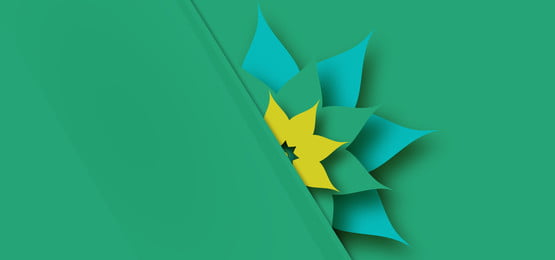 3d paper flower on green background, Paper, Floral, Background Background image