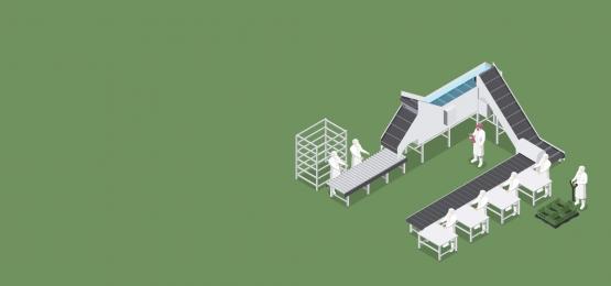 食品産業で使用される機械による自動化された生産ラインの資金, エンジニアリング, 食物, 生産 背景画像