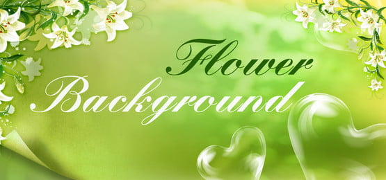 Nature Background, Photos, and Wallpaper for Free Download