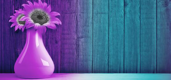 꽃병과 꽃으로 분홍색과 파란 나무 배경, 꽃병, 배경, 깃발 배경 이미지