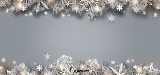 symmetrical realistic plant white christmas snowflake orange light spot background, Facula, Christmas, Snowflake Background image