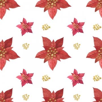 크리스마스 레드 스타 포 인 세 티아 패턴 , 크리스마스, 포인세티아, 스타 배경 이미지