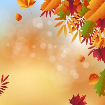 đơn giản biểu ngữ nền vector mùa thu , Mùa Thu, Rơi, Nền Ảnh nền