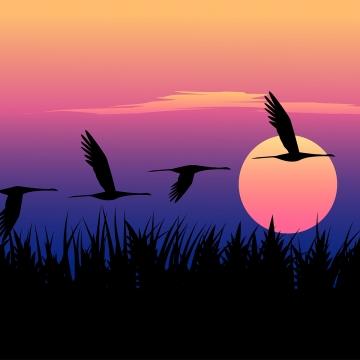burung terbang pada waktu matahari terbenam , Latar Belakang, Dinding, Sifat imej latar belakang