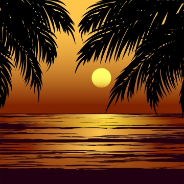 palm beach sunset , Beach, Background, Wallpaper Background image