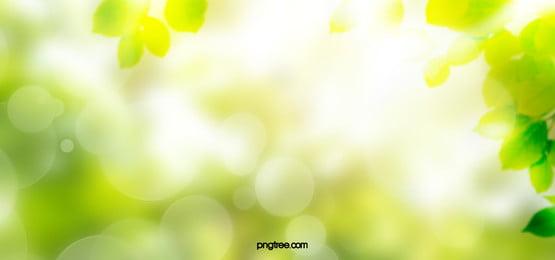 spring creative texture background