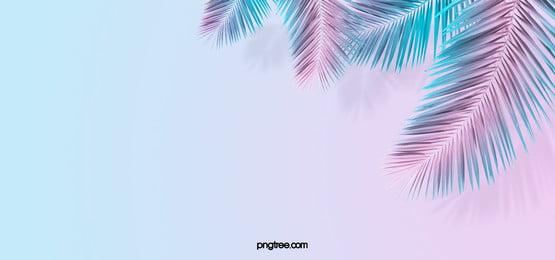 summer classic fashion creative texture background