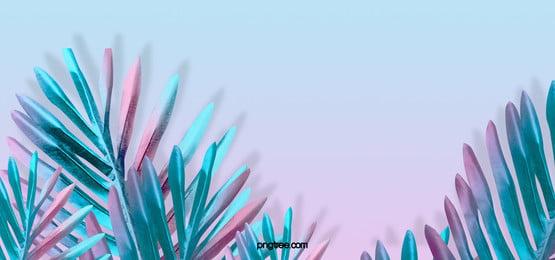 summer color minimalistic creative plant background