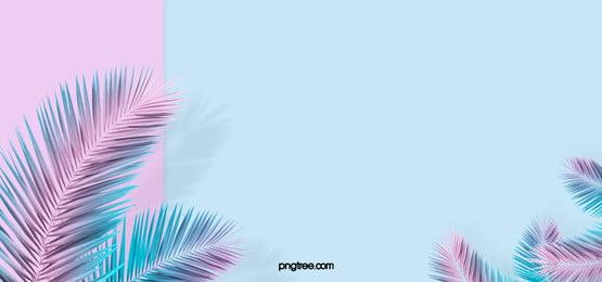 summer color paper creative minimalist background