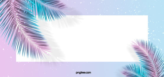 summer palm leaves creative texture background