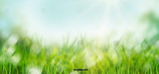 rumput latar belakang foto dan wallpaper untuk unduhan gratis rumput latar belakang foto dan