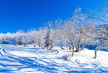 blue beautiful winter snow scenery