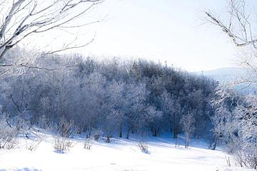 winter beautiful mountain slope snow scene natural scenery